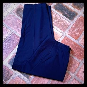 Talbots Stretch Pants 12P